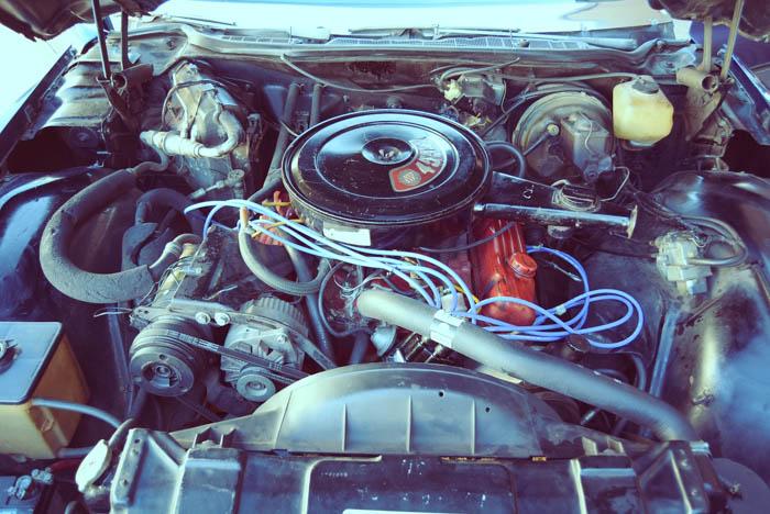 FMM Buick Riviera 029